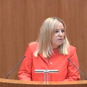 Ciudadanos pregunta en las Cortes si la Junta tiene intención de elaborar un plan minero en la provincia de Ávila