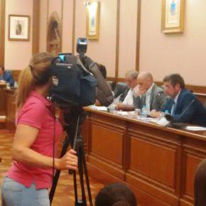 Apoyo unánime a las propuestas de Cs para luchar contra la procesionaria e instalar cambiadores de bebés en edificios públicos