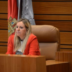 """Belén Rosado: """"El presupuesto de la Consejería de Educación está teñido de medidas naranjas"""""""