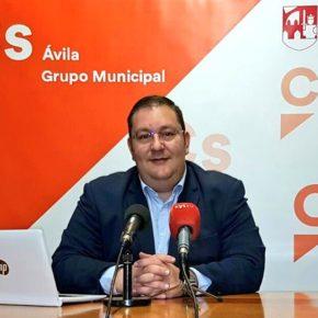 """El Grupo Municipal de Ciudadanos Ávila advierte de la aparición de una plaga """"galeruca"""" en los olmos del Parque de San Vicente"""