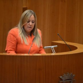 Belén Rosado pide en las Cortes Regionales una investigación sobre la intoxicación etílica de una niña abulense de 12 años