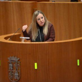 Ciudadanos urge a la Junta a subsanar las deficiencias del CEIP Juan de Yepes en Ávila
