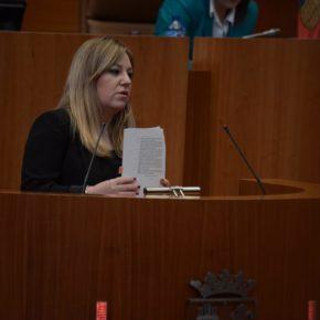 Cs exige medidas en el Congreso para paliar los continuos problemas sufridos por los usuarios del tren Ávila-Valladolid