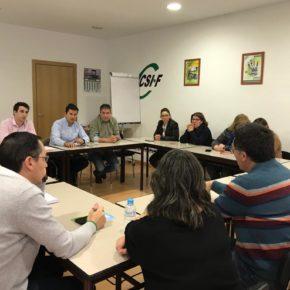 """Manuel Hernández (Cs): """"No podemos permitir que nuestros ciudadanos pierdan derechos por culpa de la burocracia"""""""