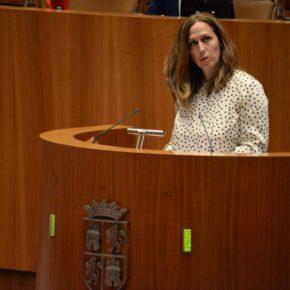 """Inmaculada Gómez (Cs): """"La atención a la dependencia precisa respaldo presupuestario para garantizar la dignidad y los derechos de las personas dependientes"""""""