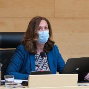 Aprobada por unanimidad una PNL de Ciudadanos para mejorar la implantación de energía limpia en Ávila
