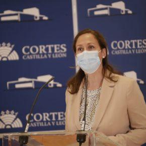 Ciudadanos solicita en las Cortes el respaldo e impulso de la Junta a la planta fotovoltaica de Las Navas del Marqués